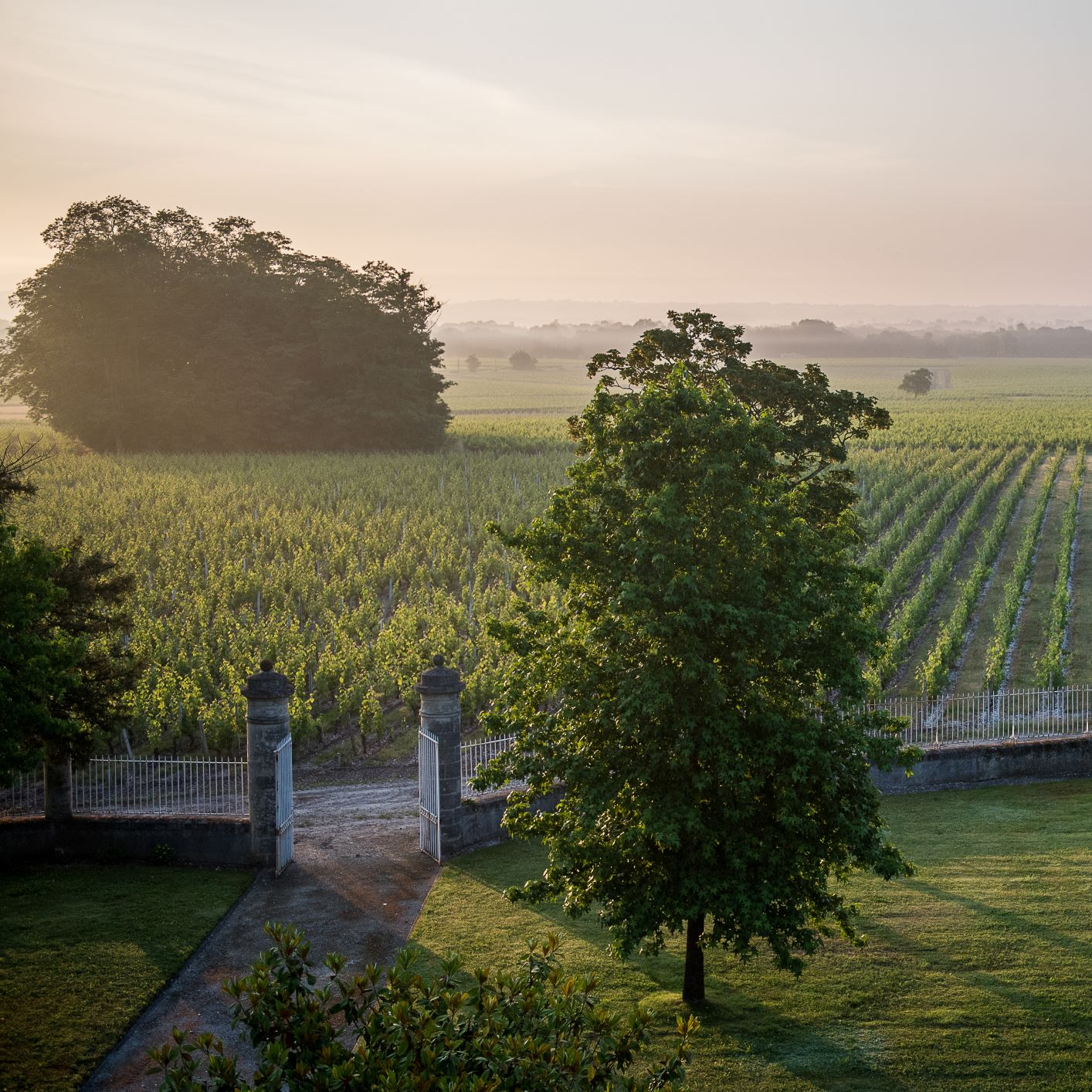 Chateau Malescasse, domaine viticole de renommée d'appellation Haut-Médoc